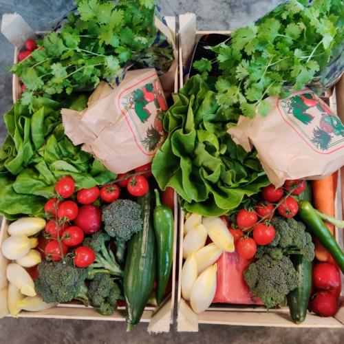 thuis leveren groenten en fruit